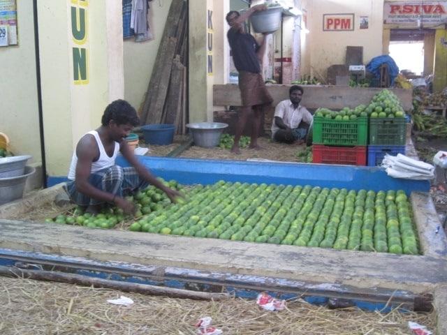 Obstmarkt_Chennai_1409-114
